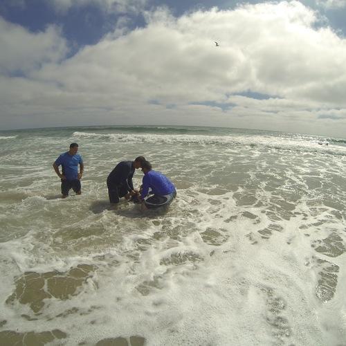 Beach Baptism 2015 Image 24